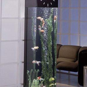 Aquarium Jam