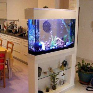 foto aquarium modern