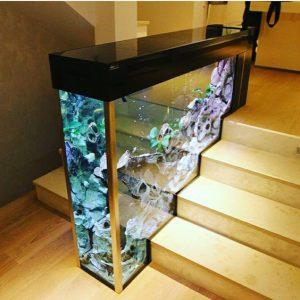 Aquaarium sekat